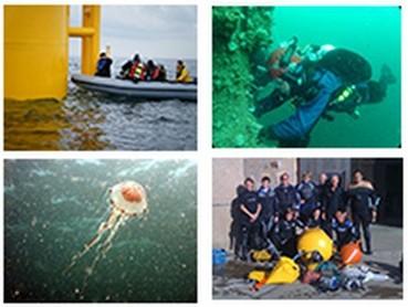 Scientific Diving Course